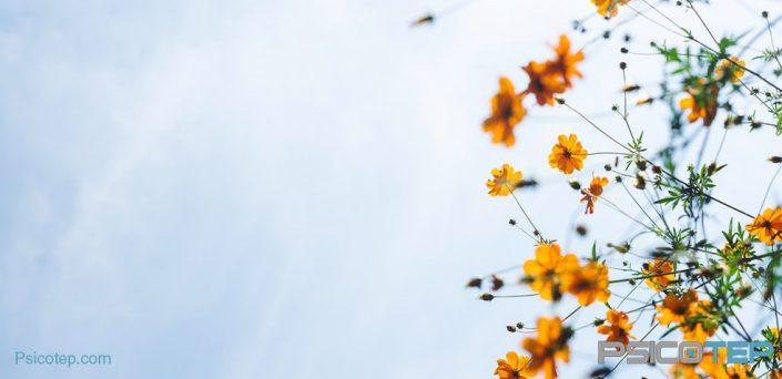 remedios-caseros-para-la-ansiedad